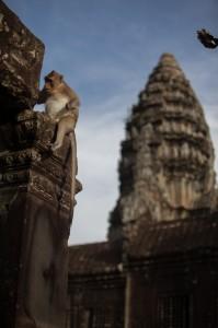 Siem Reap 5 1082